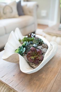 Arrange real or faux succulents in a clam shell with some spanish moss