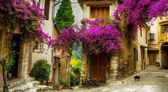 Le Petit Marseillais - Win a Trip for 2 to Provence, France - http://sweepstakesden.com/le-petit-marseillais-win-a-trip-for-2-to-provence-france/
