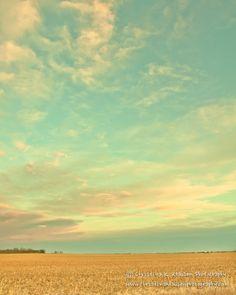 Nebraska - the land of beautiful skies! Sunset Photograph. Nebraska Landscape Photo. Nebraska. Wispy Clouds over Cornfields Photograph. Fine Art Photography 8x10 Print