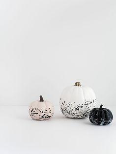 Modern minimal no-carve pumpkin decorating.