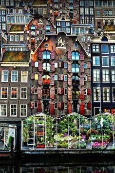 Flower Market - Amsterdam (by Thrasivoulos Panou) Netherlands. Europe.