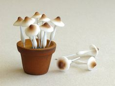 Clay Mushrooms - Miniature - Made of air dried clay and wire stems - 10 pieces per pack