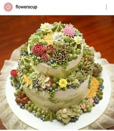 Pretty Cakes, Beautiful Cakes, Amazing Cakes, Bolo Floral, Floral Cake, Succulent Cakes, Cactus Cake, Homemade Birthday Cakes, Buttercream Flowers