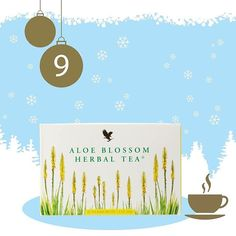 Enjoy a cup of Aloe Blossom Tea while you are listening to a beautiful Christmas music! #herbaltea #cupoftea #christmastime #goodnighttea