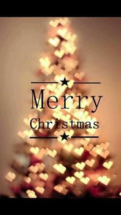 This platform of Bollywood wanted to wish each and everyone a very Happy and beautiful Merry Christmas. Send Merry Christmas wishes to your friends and family. Christmas Mood, Merry Christmas And Happy New Year, Christmas Quotes, Christmas Wishes, Christmas Greetings, Merry Christmas Tumblr, Merry Christmas Pictures, Happy Holidays, Christmas Wallpapers Tumblr