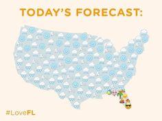 Winter In Florida, Florida Weather, Florida Girl, Florida Living, Moving To Florida, Florida Vacation, Oviedo Florida, Orlando Strong, Marco Island Florida