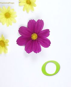 Lowercase letter o | cosmos | flowers | daisy | #daisies #alphabet #typography #initial #monogram #font