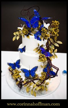Blue butterfly wedding cake - Blackstone Grille in Julington Creek, Jacksonville, Florida www.corinnahoffman.com