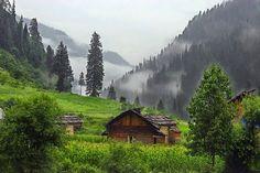 Sugavanam English Writings: Please Plant a Tree / water a tree to stop flood i...