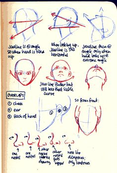 a tip on how to draw jawline when the character is looking upwards. Most common mistake is in drawing the jawline facing at an angle above horizontal, because when heads look up, jawline is still either in line with the horizontal, or slightly below it. Body Reference, Anatomy Reference, Art Reference Poses, Drawing Reference, Drawing Techniques, Drawing Tips, Drawing Tutorials, Art Tutorials, Drawing Heads