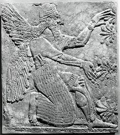 Relief panel    Period: Neo-Assyrian Date: ca. 883–859 B.C. Geography: Mesopotamia, Nimrud (ancient Kalhu) Culture: Assyrian Medium: Gypsum alabaster  [The Metropolitan Museum of Art]
