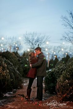 Christmas tree farm engagement photos | Ashley Mansur Photography