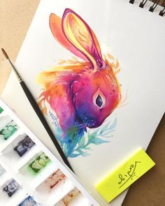 Rainbow rabbit!