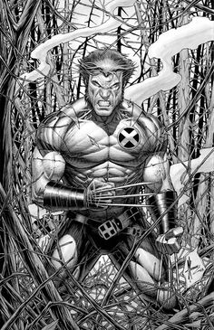 Wolverine by Dale Keown