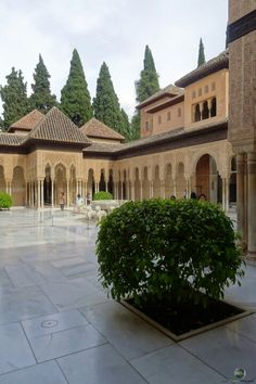 Löwenpalast in der Alhambra Mansions, House Styles, Home Decor, Travel, Mansion Houses, Homemade Home Decor, Villas, Fancy Houses, Interior Design