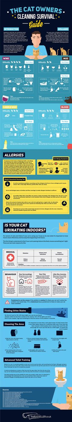 Infographic: Cat Cleaning Survival Guide - #home #cleaning #animals #cat #tips