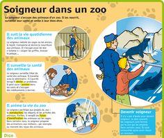 Fiche exposés : Soigneur dans un zoo