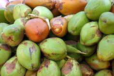 Besonderheiten von Kokos #ironking #trainingsprogramm #ironkingtrainingsprogramm #ernährung #nutrition #ernährungstipps  #kokos #kokosnuss #coconut #vorteile #benefits Onion, Nutrition, King, Vegetables, Coconut, Benefits Of, Vegetable Recipes, Onions
