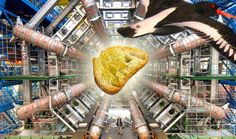 Baguette Dropped From Bird's Beak Shuts Down The Large Hadron Collider (Really)