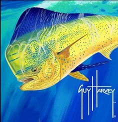 Dolphin... Dorado... Mahi Mahi... doesn't matter what you call it, it's just as much fun to eat as it is to catch. ♥´¯`•.¸¸.☆◉★ re-pinned by http://www.waterfront-properties.com/blog/huge-win-for-floridas-corals.html  ★◉☆ .¸¸.•´¯`♥
