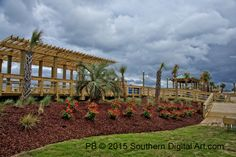 Carolina Beach Boardwalk, Vineyard, Pergola, Outdoor Structures, Vine Yard, Outdoor Pergola, Vineyard Vines