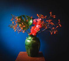 Scottish Flowers, Second Weddings, Flower Farm, Daisy, Bouquet, Tropical, Create, Floral, Margarita Flower