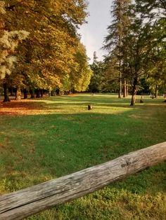 Summer ending at Talon Park