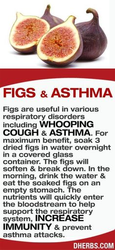 Figs are useful in various respiratory disorders including whooping cough & asthma. For maximum benefit, soak 3 dried figs in water overnight in a covered glass container. The figs will soften & break down. In the morning, drink the water & eat the soaked Arthritis Remedies, Herbal Remedies, Health Remedies, Cough Remedies, Natural Medicine, Herbal Medicine, Natural Cures, Natural Health, Natural Foods