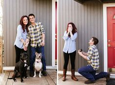 A pit bull marriage proposal! | Brooke Michelle Photography