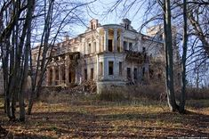 Image detail for -abandoned, creepy, decay, house, mansion, ruins - inspiring picture on ...