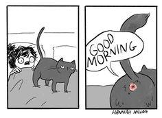 Evolución De Los Auriculares Evolución Pinterest Humor - 18 hilarious comics that are all too true for cat owners