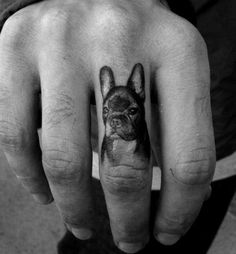 Boston Terrier Tattoo, Boston Tattoo, Skull Tattoos, Dog Tattoos, Body Art Tattoos, Great Tattoos, Mini Tattoos, Bulldogge Tattoo, French Bulldog Tattoo