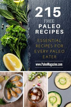 Here's a list of all the best Paleo recipes! This comprehensive list includes nut-free and egg-free recipes from some of our favorite Paleo-friendly food bloggers.