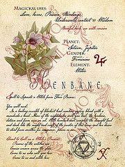 Henbane-page (a_granger) Tags: