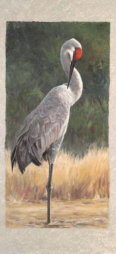 Original Art Not Print Self-Conscious Aceo Bird Plummage Forrest Festival Art
