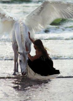 Wherever Beauty looks, Love is also there. ~ Rumi