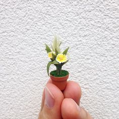 Miniature potted flower. 1:12 scale.