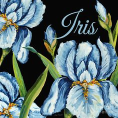 Flower Painting - Iris-jp2595 by Jean Plout