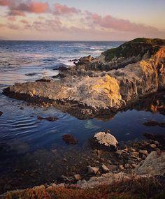 Peaceful mind... #beautifuldestination #beautifulnature #california #californiaadventure #californiadreaming #californialove #californialife #california_igers #rustlord_sea #rustlord_life #loves_united_life #usa #seagull #17miledrive #pebblebeach #travel #traveling #sunsetlovers #sea #nature_perfection #igworld_global #travelpic #sunset #sunset_pics #natureart #natureaddict #naturebeauty #naturewonder #montereylocals #pebblebeachlocals - posted by Åsa  https://www.instagram.com/asakataronn…