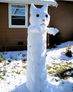 Snow Cat, lol, lol. So clever.   We are making one of these this YEAR!!