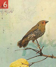 http://www.denzomag.com/wp-content/uploads/images/illustration/illustration2724.jpg