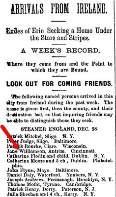 "An Irish passenger list, published in the Irish Nation newspaper (New York City, New York), 7 January 1882. Read more on the GenealogyBank blog: ""Trace Your Immigrant Ancestors with Newspaper Passenger Lists"" http://blog.genealogybank.com/trace-your-immigrant-ancestors-with-newspaper-passenger-lists.html"