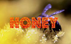 Do you love honey?