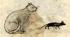 Bibliothèque Nationale de France, lat. 6838B, Folio 18r  A cat watches a mouse.