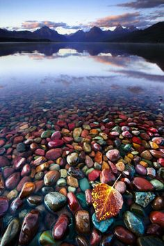 This is the beautiful and colorful Pebble Shore Lake in Glacier National Park, Montana