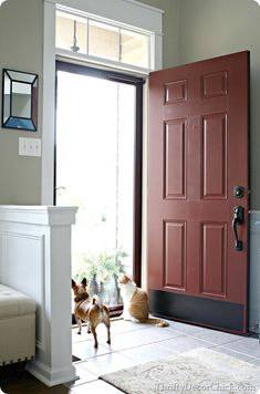 Adding a glass door to bring in more natural light the painted door   Front doors  Storms and Screens. Entry Door Kick Plates. Home Design Ideas
