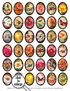 Flora and Fauna ovals collage sheet in 30 x 40 mm -- piddix no. 793. $3.75, via Etsy.
