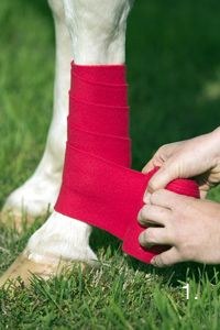 Learn to Care for Polo Wraps | Horse&Rider