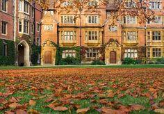 Cambridge, Αγγλία το φθινόπωρο enchantedengland: Κάποιος πήρε να ξαπλώνει σε αυτό το χορτάρι να εκμεταλλευτώ αυτή την ματιά σε αυτά τα ΠΟΡΤΕΣ ποτέ δεν θα πάρει πάνω από πρηνή θέση μου ΠΟΤΕ
