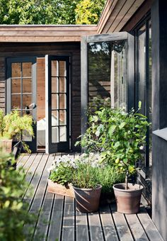 sommerhus i Tisvilde med plads til familie og venner Wooden terrace with many plants and flowers, brings the nature close to the house.Wooden terrace with many plants and flowers, brings the nature close to the house. Outdoor Rooms, Outdoor Gardens, Outdoor Living, Outdoor Plants, Wooden Terrace, Terrace Garden, Balcony Gardening, Container Gardening, Black House